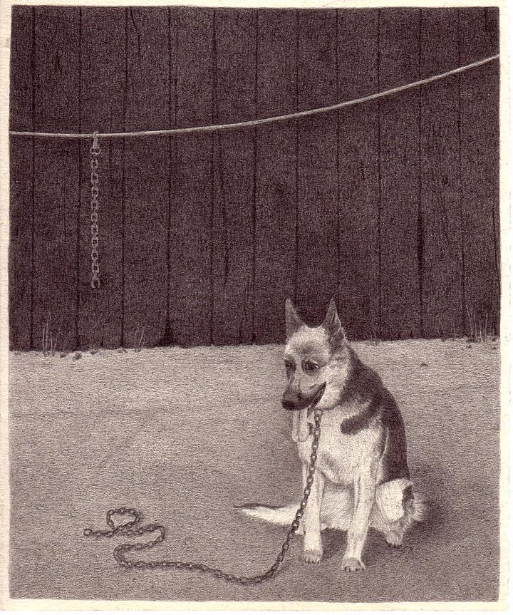 """Patricia Huck, a.d. Reihe """"Geschichten von Tragik und Zufall"""", (Hund) Bleistift auf Papier, 2011 / sold"""
