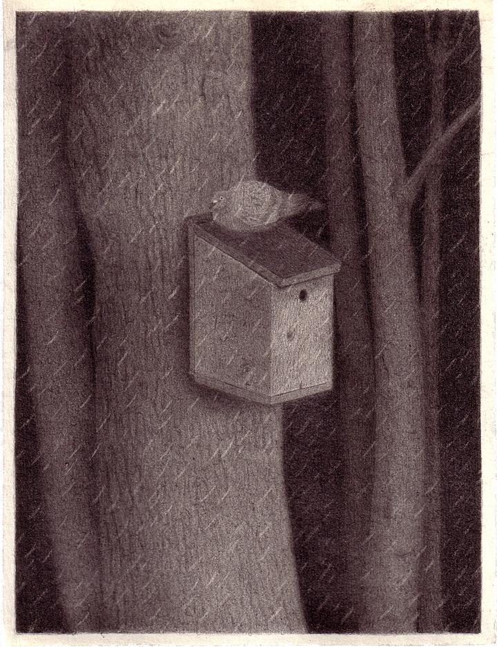 """Patricia Huck, a.d. Reihe """"Geschichten von Tragik und Zufall"""", (Vogel) Bleistift auf Papier, 2011"""